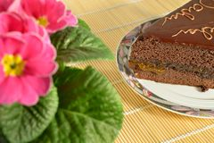 Chocolate cake Sacher Torte and pink flowers Royalty Free Stock Images