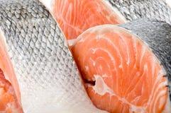 Piece of a salmon Royalty Free Stock Photos