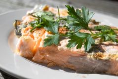 A piece of Salmon decorated with parsley leafs Stock Photography