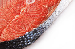 Piece of a salmon Stock Photography