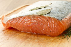 Piece of salted salmon Royalty Free Stock Photography