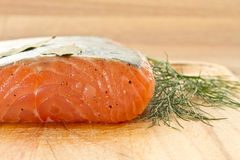Piece of salted salmon Royalty Free Stock Image
