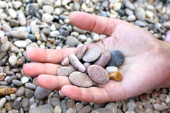 Piece of sea. Hand with pebbles Stock Images