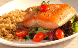 Piece of seared salmon Royalty Free Stock Image