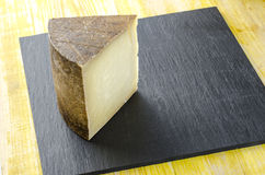 Piece of sheep milk cheese. Stock Photos