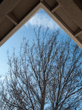 A piece of sky. Blue sky and tree seen from a porch. An unusual angle since the roof is in place of the sky while the visible sky has the shape of a roof Royalty Free Stock Images