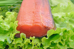 Piece of smoked salmon on lettuce leaves Stock Photography