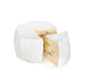 A piece of soft brie cheese Stock Photography