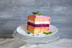 Piece of a striped cake in a cut, consisting of sand, white, pink, dark red layers, with pieces of mint lying on a white plate on. A gray fuzzy background Stock Image