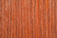 Piece of structural wooden board covered Royalty Free Stock Images