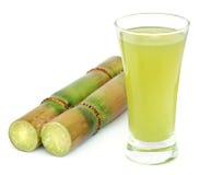 Piece of sugarcane juice Royalty Free Stock Photos