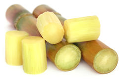 Piece of sugarcane Royalty Free Stock Images