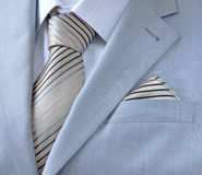 Piece suit with white shirt, tie, scarf Royalty Free Stock Image