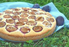 Piece of summer cake with plums on blue cloth on grass. Front horizontal view Stock Image