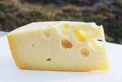 Piece of swiss cheese with holes Stock Photos