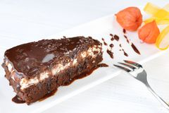 Piece of tasty chocolate cake Stock Images
