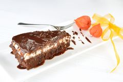 Piece of tasty chocolate cake Royalty Free Stock Photos
