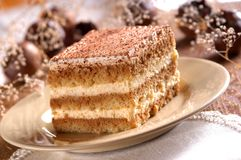 Piece of tiramisu cream and custard pastry Stock Images