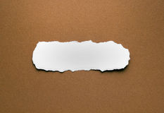A piece of torn paper on a brown background Royalty Free Stock Photo