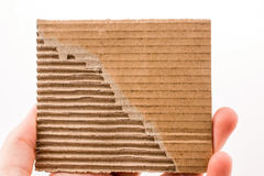 Piece of torn paper in hand Royalty Free Stock Photo