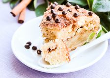 Piece of traditional american coffee cake with brown sugar, cinnamon, chocolate chips or drops on a dessert plate, selective focus. Easter cake. Homemade cake Royalty Free Stock Photos
