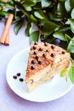 Piece of traditional american coffee cake with brown sugar, cinnamon, chocolate chips or drops on a dessert plate, selective focus. Easter cake. Homemade cake Stock Photography