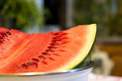 Piece of watermelon in a bowl. On table royalty free stock photography