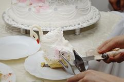 A piece of a wedding cake in the shape of a swan lies on a plate. Close-up royalty free stock photo