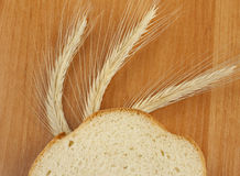 A piece of white bread. With spikelets Stock Image