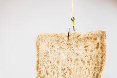 Piece of white bread hanging on a fishing hook Royalty Free Stock Image