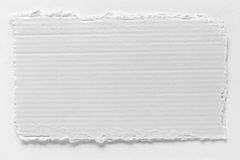 Piece of white cardboard tear texture Stock Image