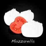 Piece of white mozzarella isolated. Illustration Royalty Free Stock Photos