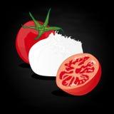 Piece of white mozzarella isolated. Illustration. Vector illustration on white background Royalty Free Stock Images