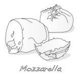 Piece of white mozzarella isolated. Illustration Royalty Free Stock Image