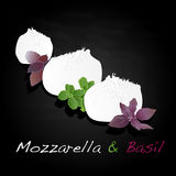 Piece of white mozzarella isolated. Illustration Stock Image