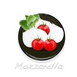 Piece of white mozzarella isolated. Illustration Stock Photo