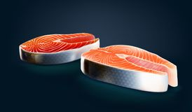 2 piece of wild salmon and farmed salmon cross cut. Realistic wild chinook,king,pacific salmon raw meat slice and a piece of farmed salmon raw meat slice Royalty Free Stock Images