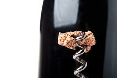 Piece of wine cork on a corkscrew Stock Images
