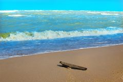 Piece of wood on the deserted sandy beach. Of the sea in storm Royalty Free Stock Images
