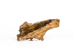 Piece of wood on white background, Old wood, Wood for home. Royalty Free Stock Image