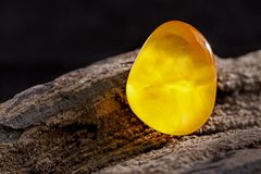 Natural amber. A piece of yellow opaque natural amber on large piece of dark stoned wood. A piece of yellow semi opaque natural amber, classification color stock photos