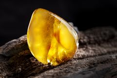 Natural amber. A piece of yellow opaque natural amber on large piece of dark stoned wood. A piece of yellow semi opaque natural amber, classification color stock image