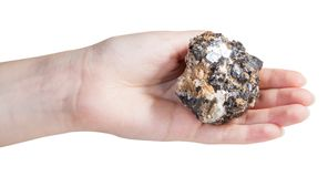 Piece of zinc and lead mineral ore on female palm Royalty Free Stock Image