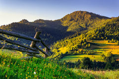Pieceful morning. Wooden fence in the grass on the hillside Stock Image