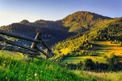 Pieceful ranek Obraz Stock