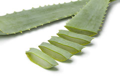Pieces of Aloe leaf Royalty Free Stock Image