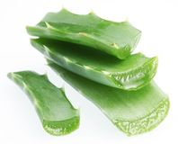 Pieces of aloe vera Stock Photography