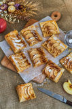 Pieces of apple pie. Homemade desserts. A composition with slices of appetizing pie, apples and herbs. Burlap background Royalty Free Stock Photos
