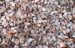 Pieces of bark Royalty Free Stock Images