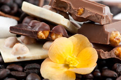 Pieces of Black and White Chocolate with Coffee A Royalty Free Stock Photos